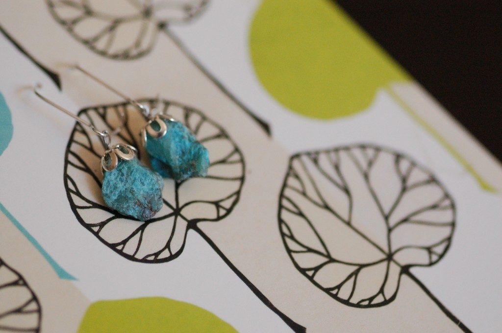 Stone earrings on card