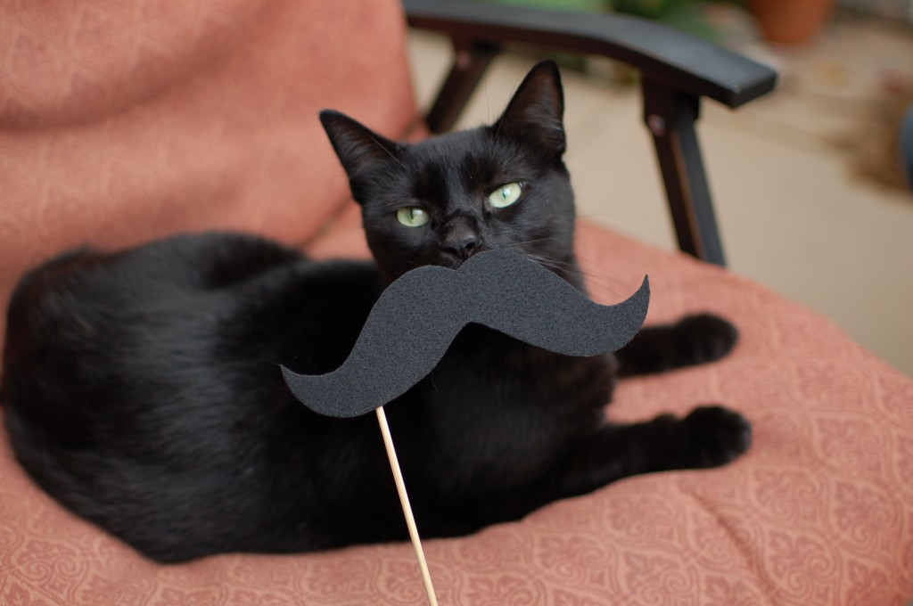 Pixel with a mustache