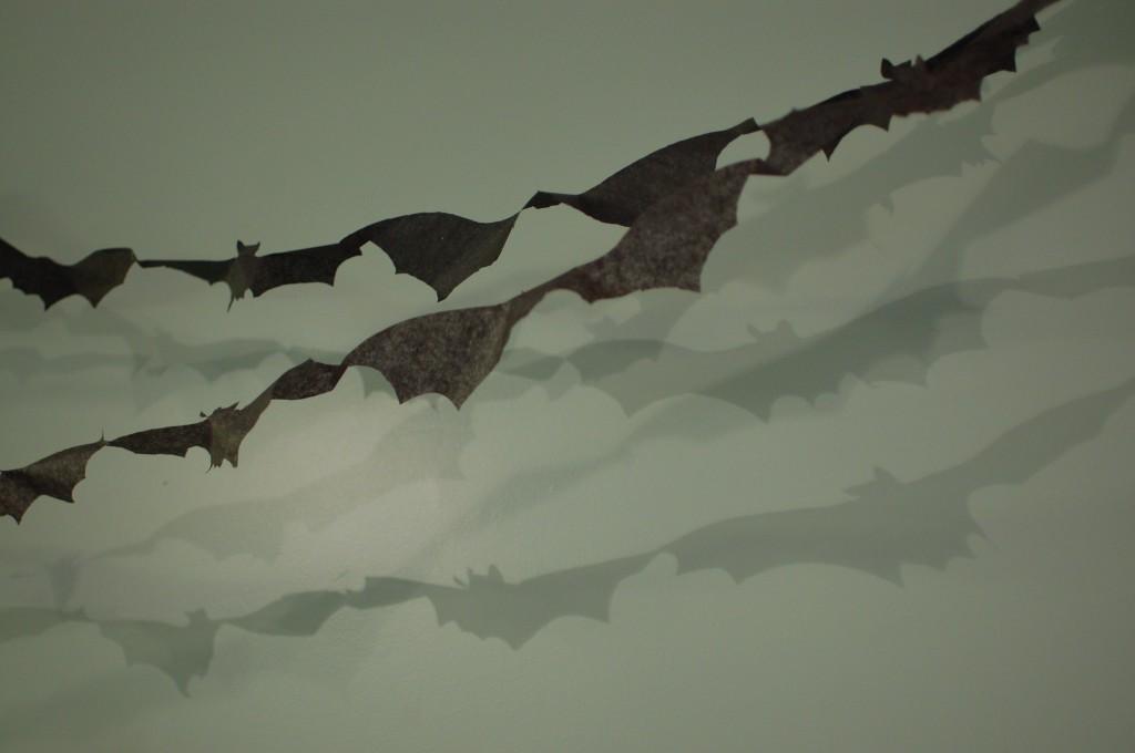 Bat shadows