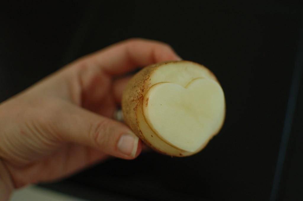 Finished potato stamp