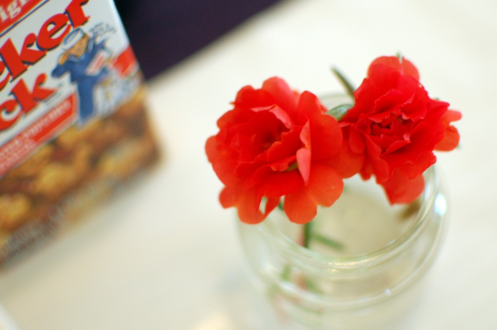 Red moss roses