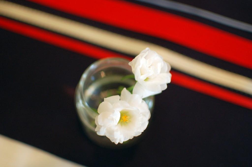 White moss roses