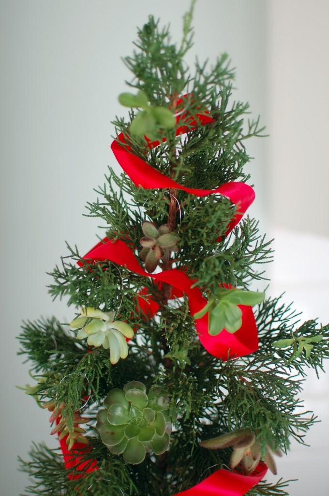 Succulent ornaments on a mini tree