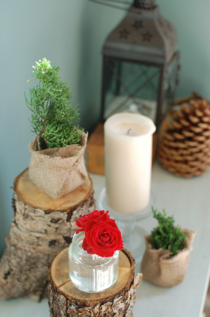 Rustic Christmas accessories