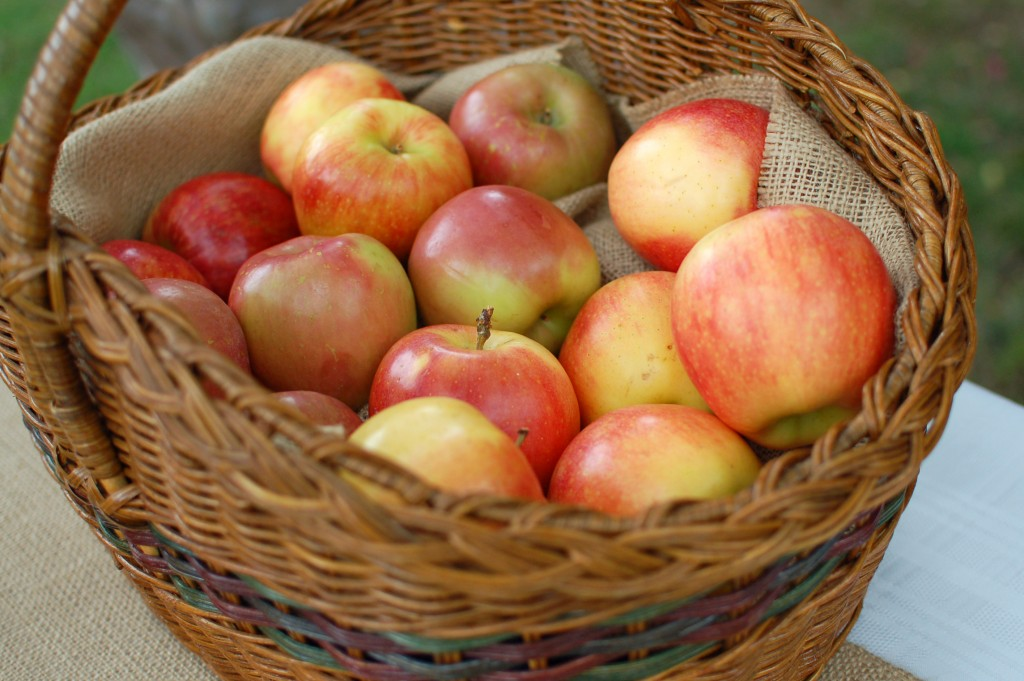 Apples for dipping
