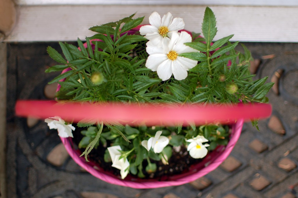 Easter basket planter
