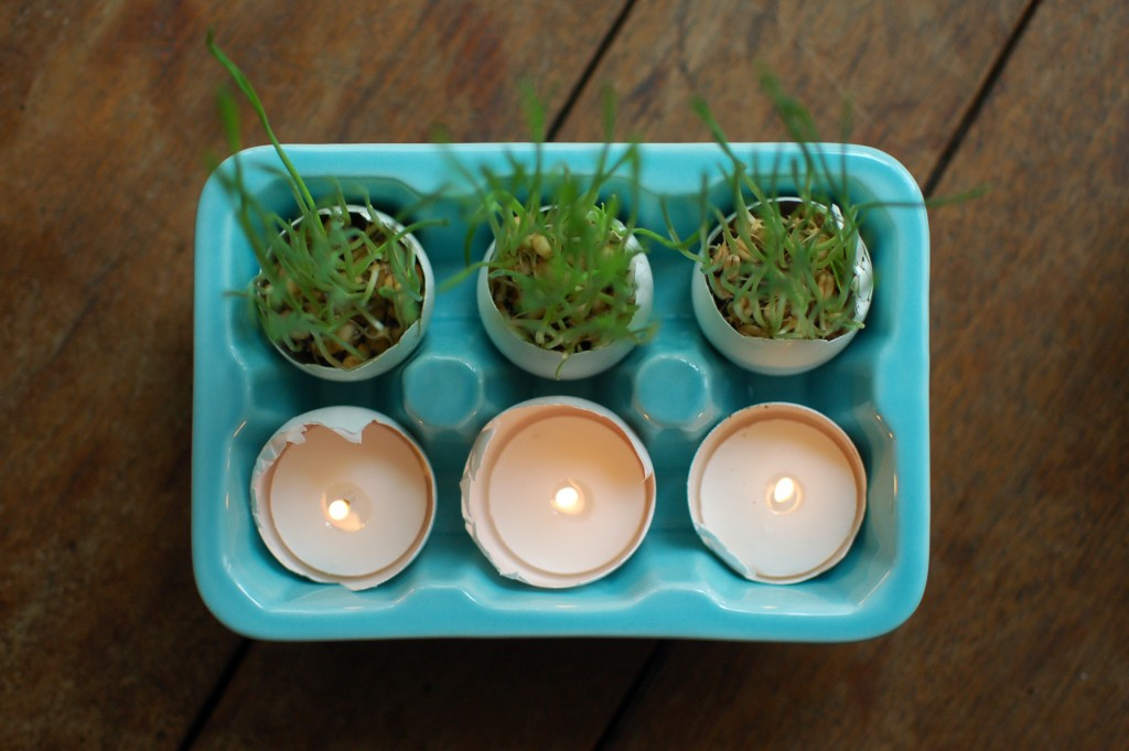Candles and wheatgrass in eggshells