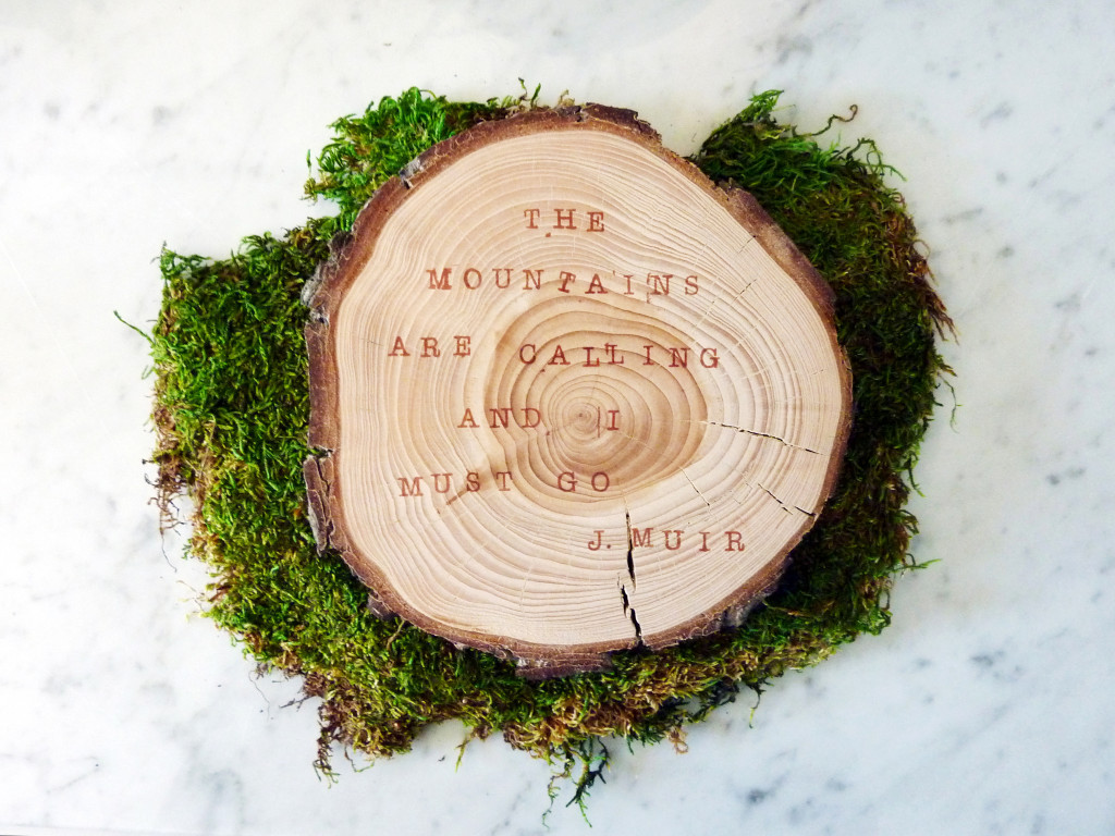 Stamped wood slice with moss and marble