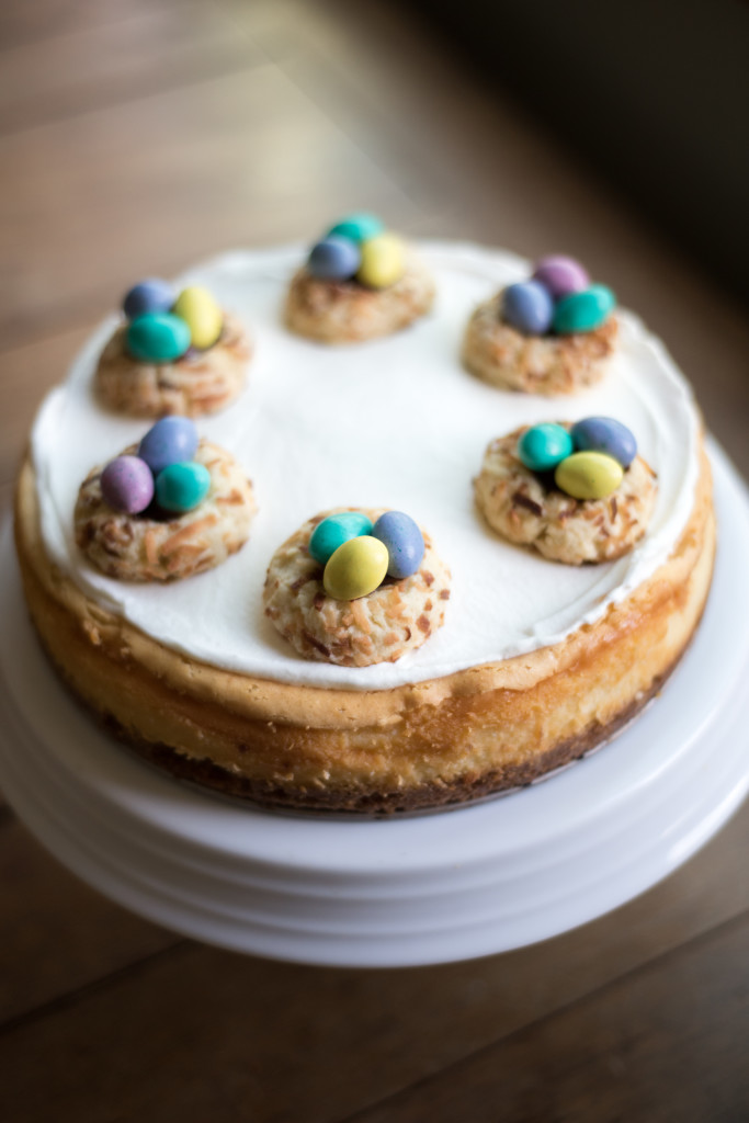 Coconut Cheesecake and Nests